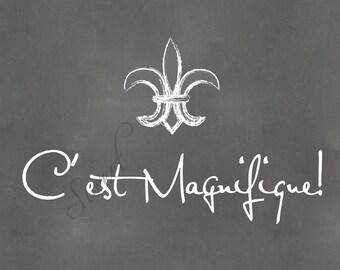 C'est Magnifique, 8x10 print (chalkboard shown)