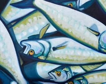 "Bluefish 12""x12"" Original Oil By Carin Vaughn"