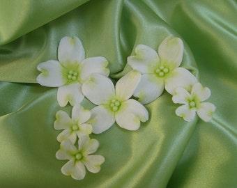 Sugar Gumpaste Dogwood Blossoms  Chartruse set of 18