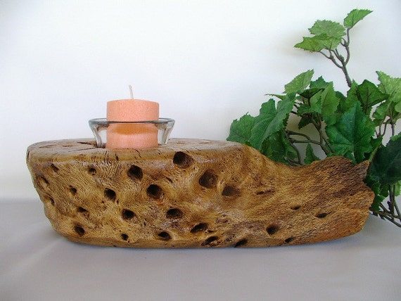 Arizona teddy bear cholla cactus wood rustic candle holder
