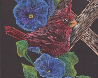 Cardinal and Morning Glories Scratchboard and Watercolor