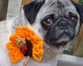 Thanksgiving Turkey Neck Warmer for Dogs - Made To Order