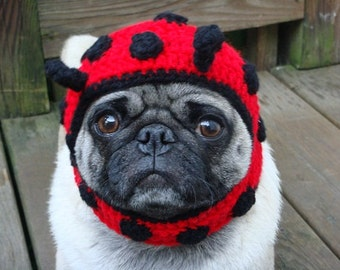 Dog Hat - Ladybug/ Made to Order