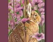 ACEO Original Rabbit