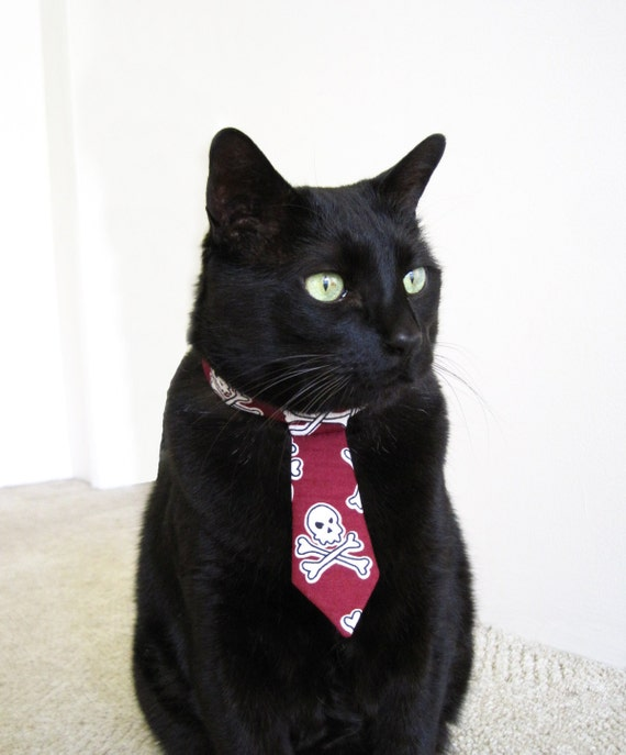 Cat Tie - Bad to the Bone