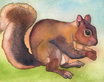 PRINT - Goodnight Squirrel