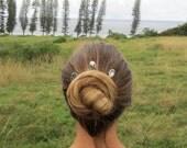 Shell Bobby Pins, Hawaii Beach, Hair Accessories, Hawaiian Shells, Opihi Shell, Hair Ornament