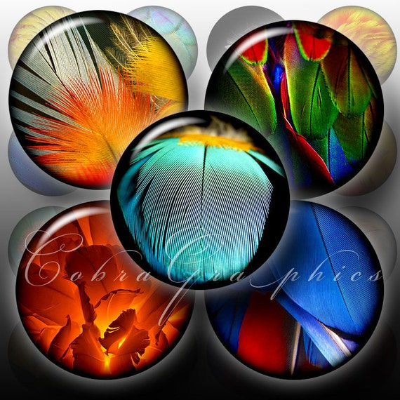 Feather  - 1.5 inch, 1 inch and 25mm circles - Digital Collage Sheets CG-261 for Jewelry, Bottle Caps