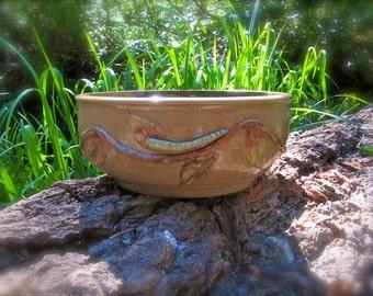 Bowl With Caterpillar