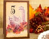 Wedding Table Numbers Autumn Castle Orange Flowers