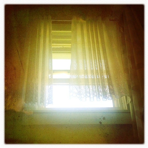 Lomography Photograph  7x7  iPhoneography Home Decor Office Decor Bamboo Summer Spring Sun Bright
