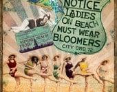 "1920s Bathing Beauties Digital Collage ""Season Pass"""