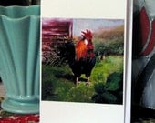 Rooster Art Card