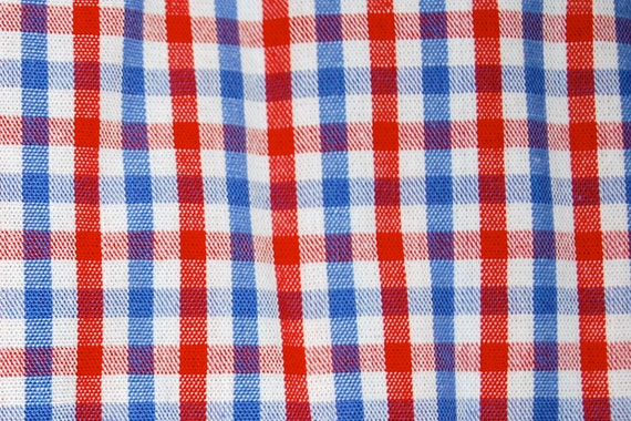 Fabric Finders - Red/Blue Check Fabric