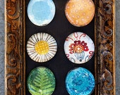 "Wordsworth Collection: The Daffodils glass magnet set (6 piece 1.25"")"