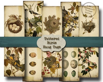 Tattered Birds Hang Tags - Digital Collage Sheet - gift tags vintage bird nests eggs nature altered art
