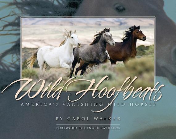 Wild Hoofbeats: America's Vanishing Wild Horses - Book - Fine Art Wild Horse Photographs
