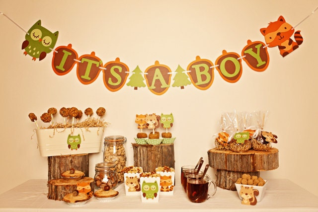 Baby Shower Woodland Forest Theme Showers Pinterest
