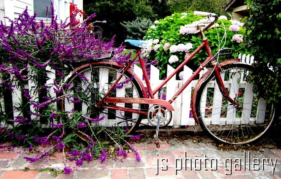 Red Bicycle - 12 x 18 Fine Art Photographic Print - Bike Art