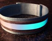 Blue Reflective Glow in the Dark Safety Band Dog Collar