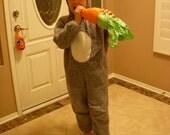 Child's Bunny Costume
