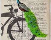 Peacock on black bicycle - Original Illustration-Art Print-Art Poster- Hand Painting Mixed Media- French 1920 Vintage Paper