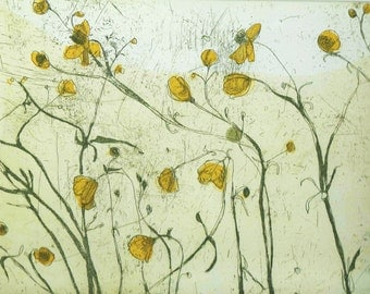 Etching print 'Buttercup' original, hand pulled etching and aquatint by Marta Wakula-Mac