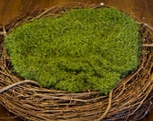 Hand Crocheted Moss Green Blanket Newborn Photography Prop 36x36 inches