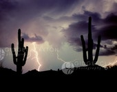 Fine Art Photography 8 x 10 Print - Lightning - Saguaro Blues - Home Decor -  Gifts Under 50