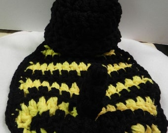 Bumble Bee Cape and Hat Set