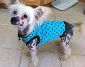 Dog Sleeveless T-Shirt, Teal Blue with Brown Poka Dots, Dog Tank Toop