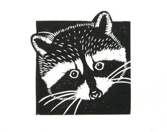 Linocut animals, raccoon, wasbeer, hand printed wall art, matted, ready to frame, woodland animal