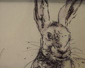 Original Signed Pen and wash study of Hare