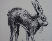 SALE FREE POSTAGE until 1st May Signed Hare Print from original Painting