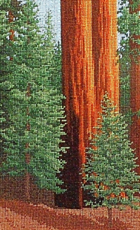 National Park Needlework Big Sequoia Trees Counted Cross