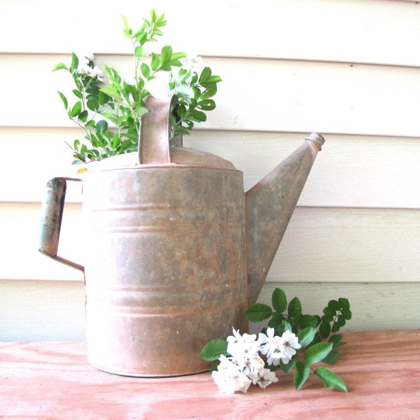 Vintage Watering Can Planter Box Vase Decorative