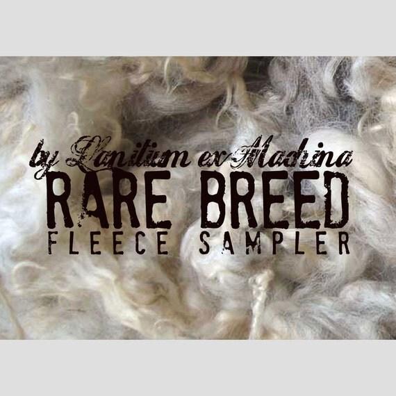 Rare Breed Fleece Sampler Pack - 5oz of fibery goodness