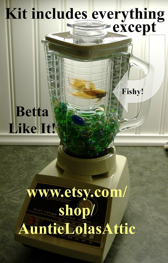 Items similar to osterizer blender fish friendly for Fish in a blender