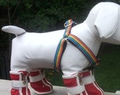 Rainbow Step In Dog Harness