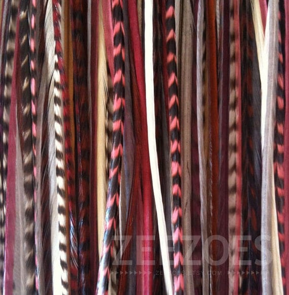 Burgundy Long 6 Feather Hair Extension - Salon Grade :  Free Micro Link Bead