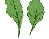 Drink your Kale- 8X10 illustration print
