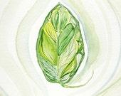 5X7 Watercolor Print, Leaf watercolor, Echo, Simplify Series