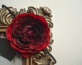 "Dark Red ""Ranunculus"" Flower on a Black Headband perfect for Christmas"