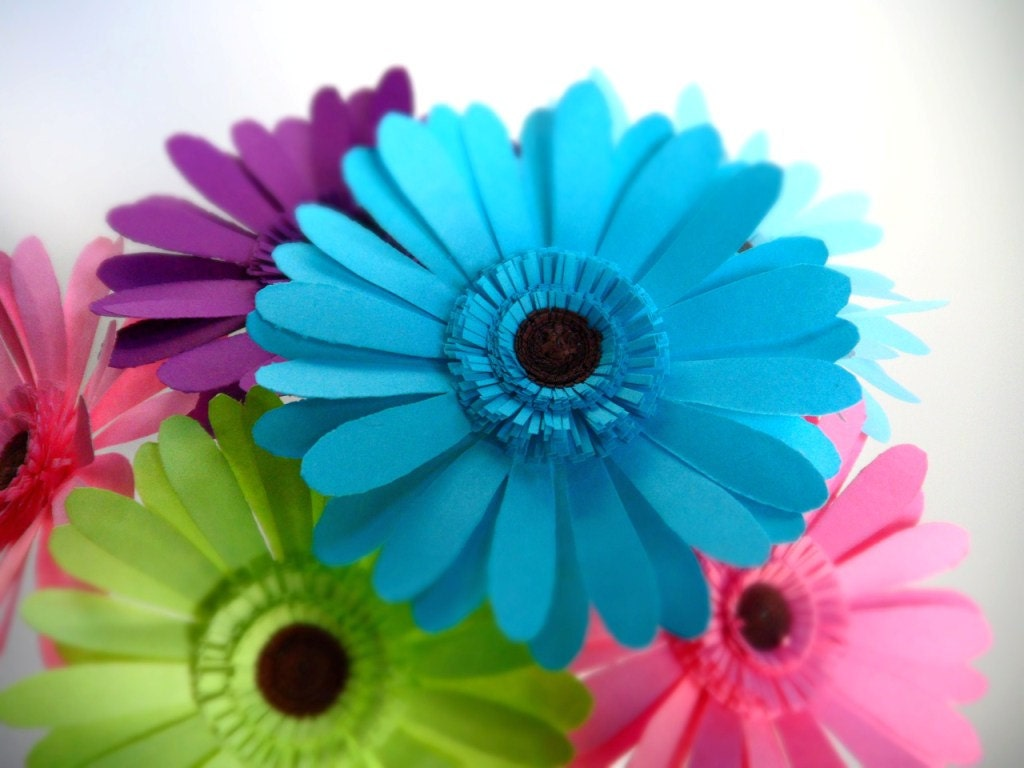 Pinterest daisy wedding bouquets gerbera daisy bouquet and daisy - Blue Gerbera Daisy Wallpaper Www Galleryhip Com The
