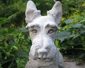 Concrete Medium Scottish Terrier Dog