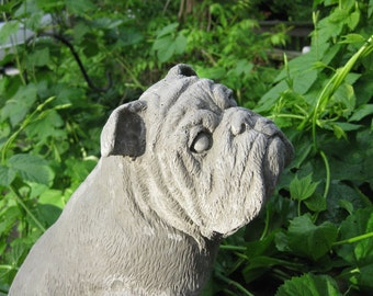 Large concrete Bulldog