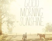 Good Morning Sunshine. Art Print. Horses Photo. Fine Art Photography. Typography. Golden Sunlight. Dreamy. Size 12x12""