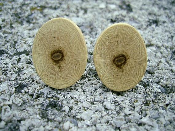 WOODEN CUFFLINKS Beautiful Grapevine Branch Oval Handmade Wooden Cufflinks