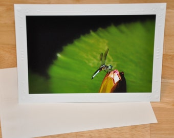 Photo Greeting Card - Dragonfly on Tropical Lily