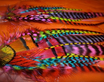 ON SALE: Long Feather Earrings -spectra